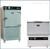 DW-系列冷冻试验箱